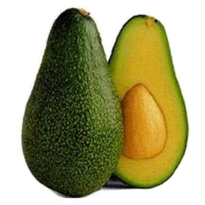 Avocado Unsaponafiables