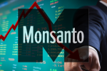 Huge Win: Monsanto Stock Downgraded After Worst Growth in 7 Years